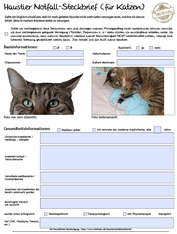 LiJaLuLiSa: Haustier Notfall-Steckbrief für Katzen