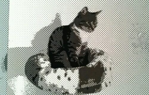 PaperCamera2012-11-17-01-25-16