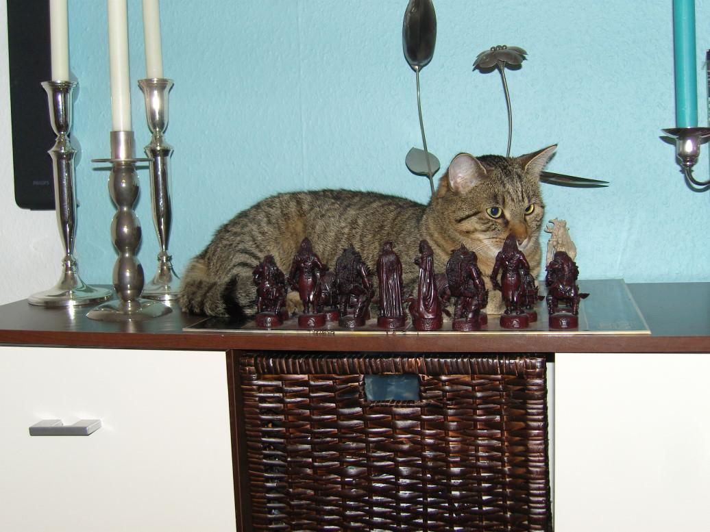 Jasper: Mehr matt als Schach (Schachmatt Copycat)