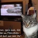 Linus: Neulich im Fernsehen