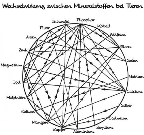 mineral-interrelationship_IMG
