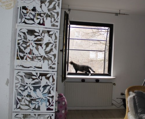 _the3cats_2015_03_19_0822