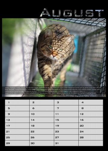 08_knw_kalender_jasper