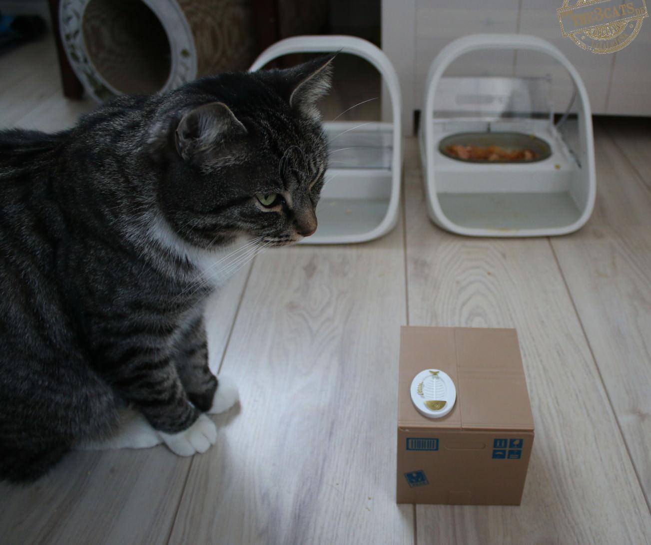 Linus: Meine Spardose, mein Futterautomat [SureFeed Futterautomat Teil 1]